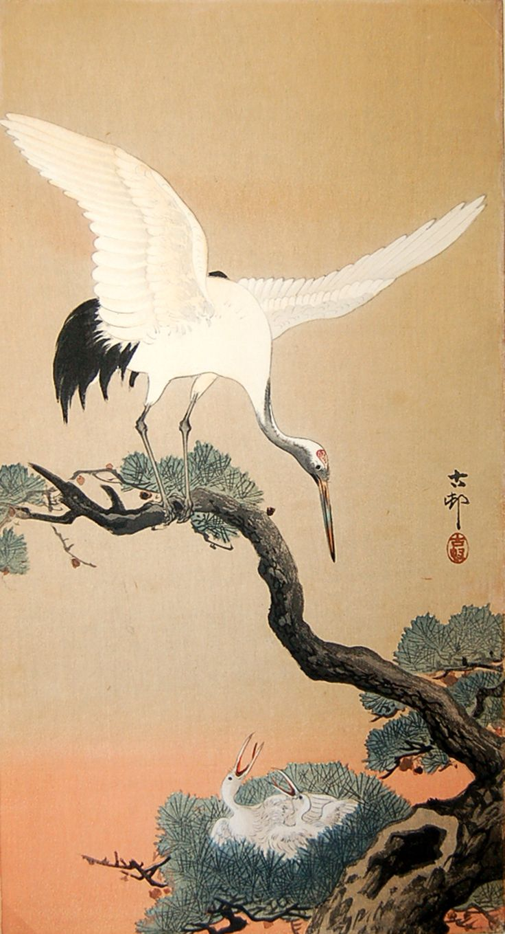 "Ukiyo-e, Edo period, Ohara Shoson, ""Crane with Nestlings in Pine Tree"""