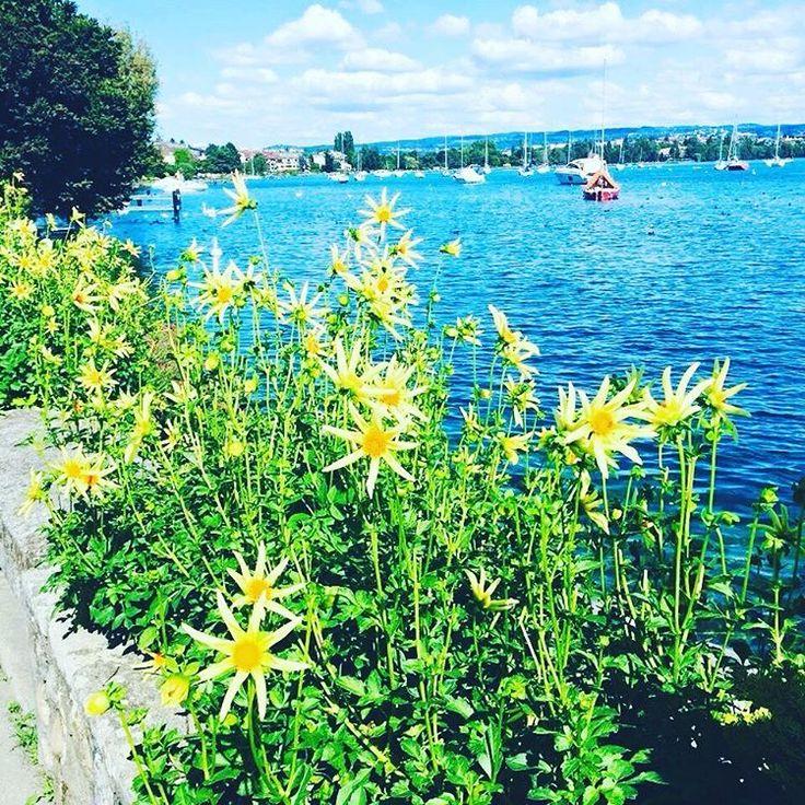 """39 mentions J'aime, 2 commentaires - 🎀Blogueira🎀 (@lena__gomes) sur Instagram: """"Quanto mais estiver ligada à natureza, mais se sentirá que faz parte de algo maravilhoso!…"""""""