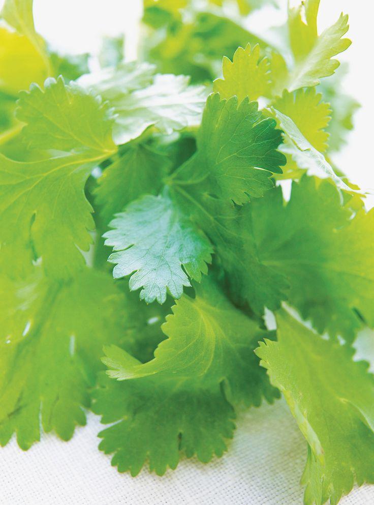 Recette de Ricardo de salade de cactus.  Cette salade original à base de pousses de cactus fait un excellent repas latino-américain.