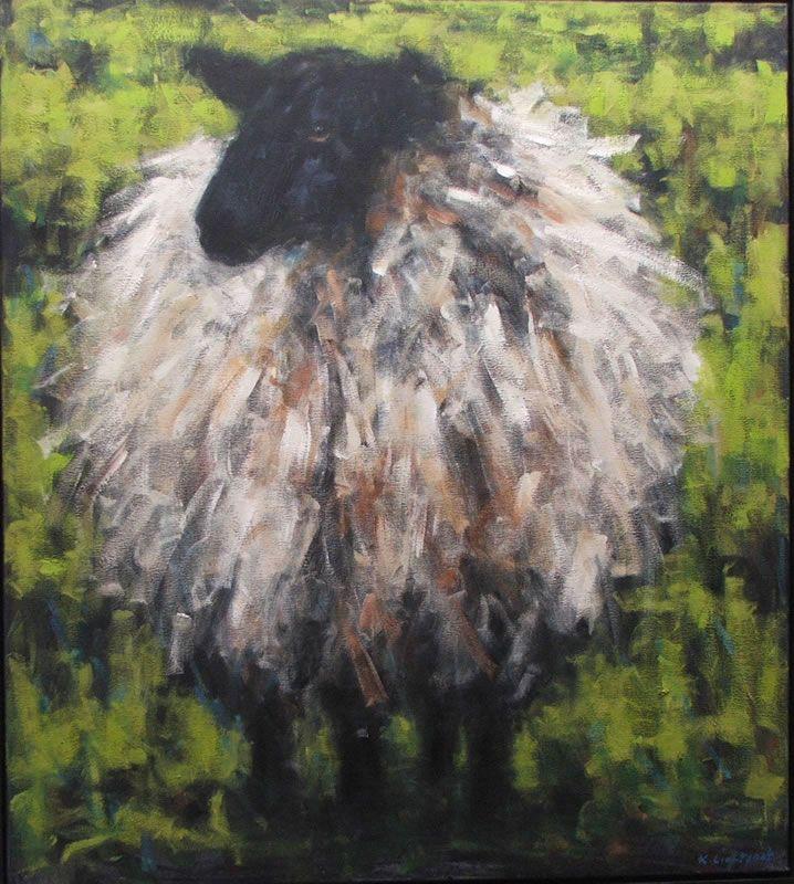 sheep                                                                                                                                                                                 More
