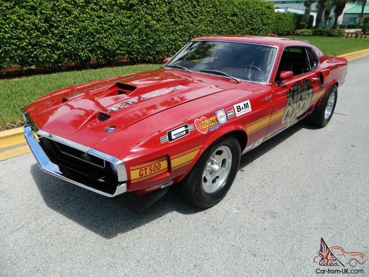 "1969 SHELBY GT500 COBRAJET RACED AS ""KING COBRA"" AND ""POONTANG"" DURING ..."
