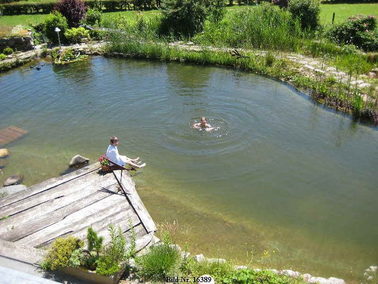 "Oh, I want a ""Schwimmteich"" - it is a combo of a pond with a swimmingpool - so cool!"