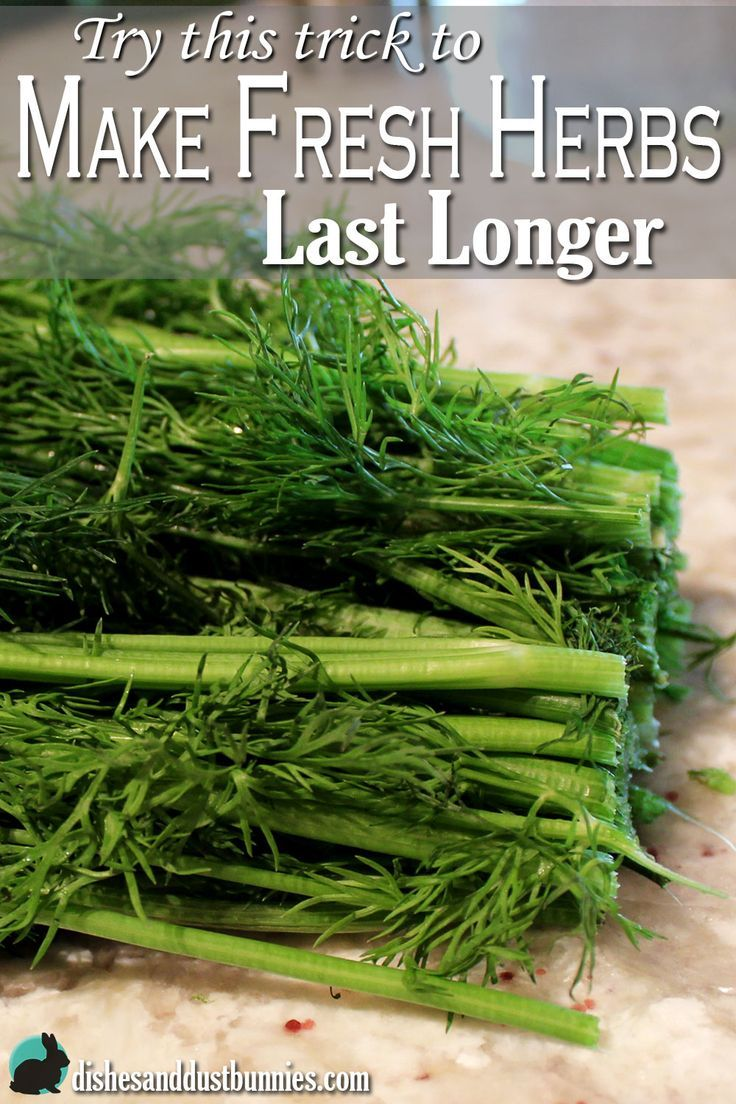 Try this great trick that will keep fresh herbs lasting 2-3 weeks longer - and it costs next to nothing!