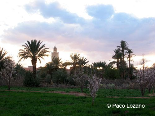 Ouarzazate, Morocco : World Travel Pictures