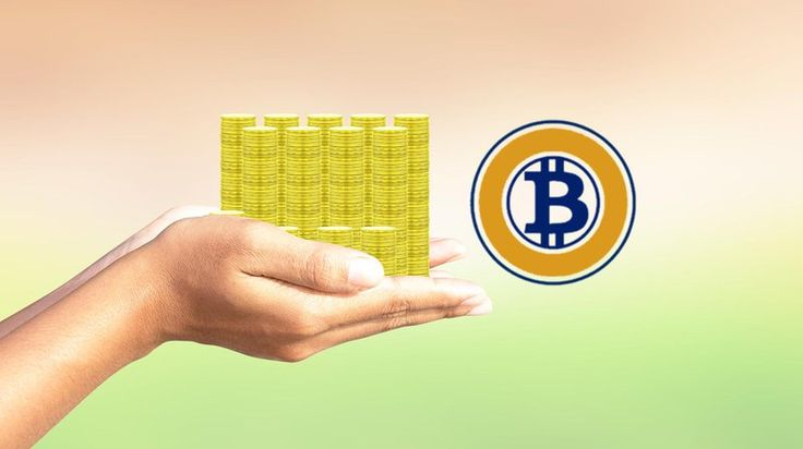 A Beginners Guide to Claiming Your Bitcoin Gold (and Selling It) Bitcoin Crypto News Digital Assets Technical