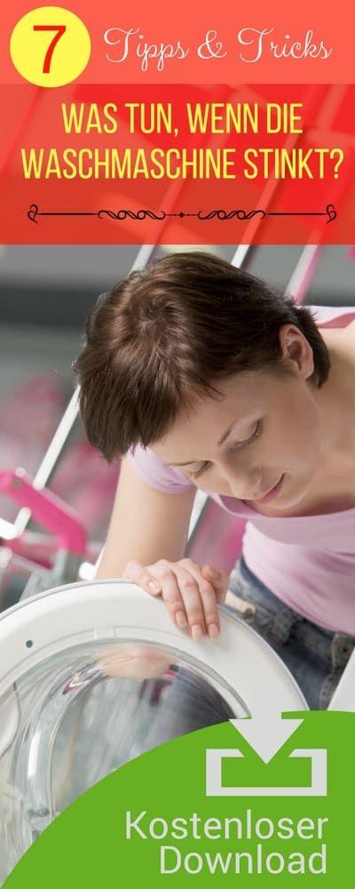 Waschmaschine und Spülmaschine reinigen