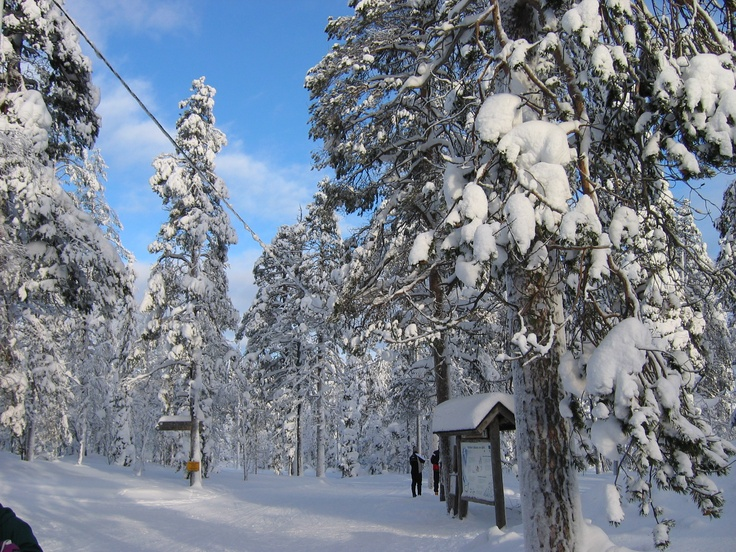 Trail around Ylläs fell