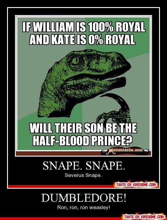 Harry Potter whore.