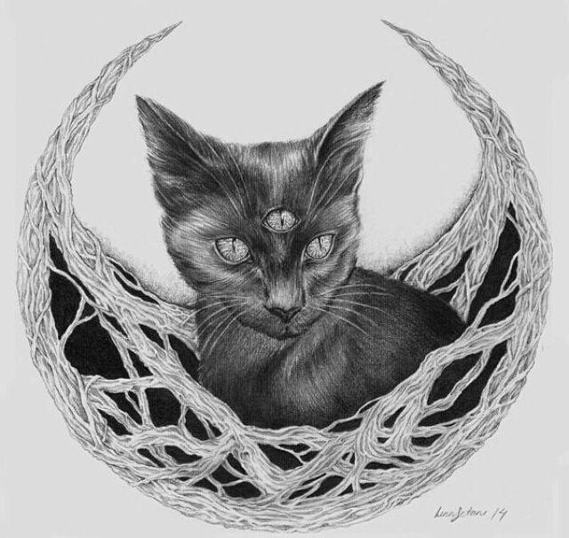 third eye <3 cat <3