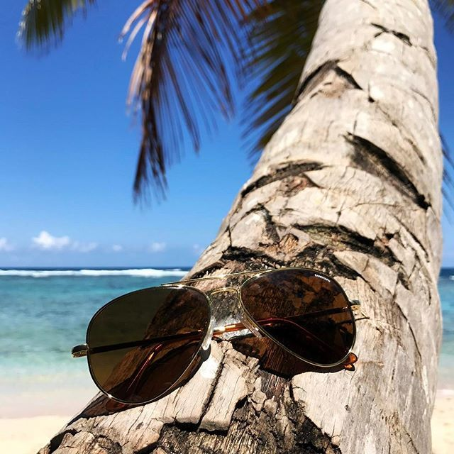 It doesn't get any more timeless than aviator shades! Love these 🕶 from @randolph.usa in 23K gold. 🏝☀️🌊 #BågarOchGlas #Randolph