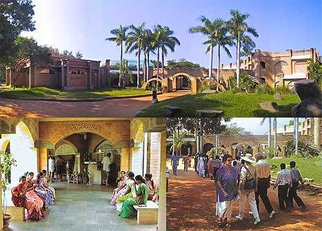Your First Steps into Auroville: A Quick Guide | Auroville