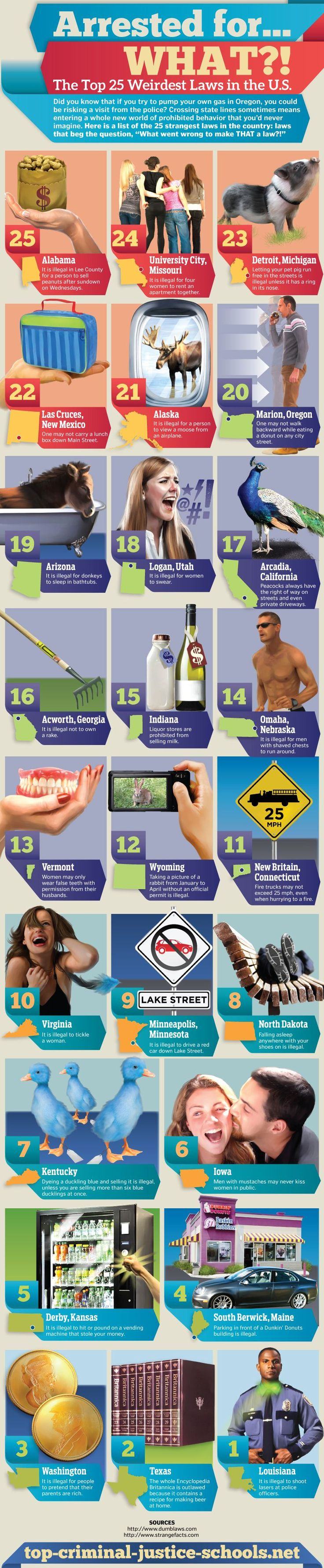 nice Top 25 weird laws in the united states