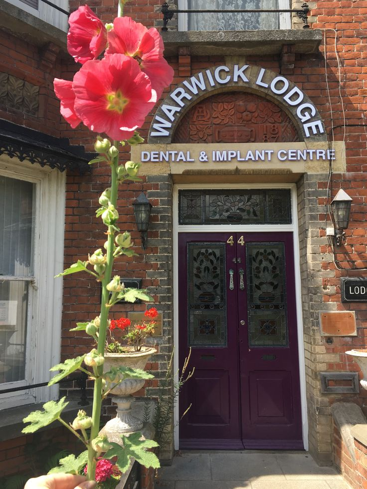 This beautiful hollyhock looking good outside the practice.   Warwick Lodge Dental and Implant Centre 44 Canterbury Road, Herne Bay, Kent. CT6 5DF For an appointment call us on (01227) 375592   #warwicklodgedental #dentist #teeth #hernebay #lovehernebay #molar #canine #teethwhitening #flowers #summer #pretty #hollyhock #teethstraightening #invisilign #aligners #xray #signboards