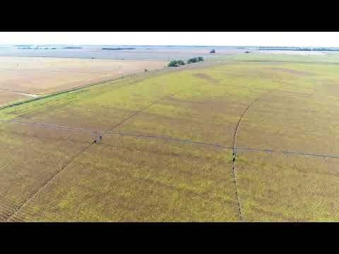 SOLD!  $7,650/Acre - 160 Acres Adams County Nebraska Pivot Irrigated LAND AUCTION