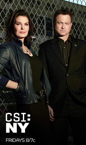CSI New York: Detectives Mac Taylor and Jo Danville (Sela Ward: 2010 - 2013) | These two. :-)