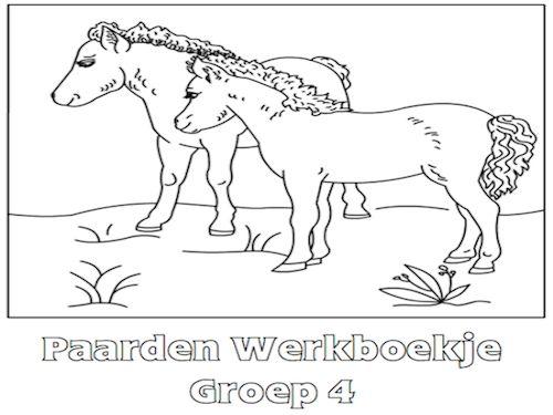 Paarden Werkboekje Groep 4