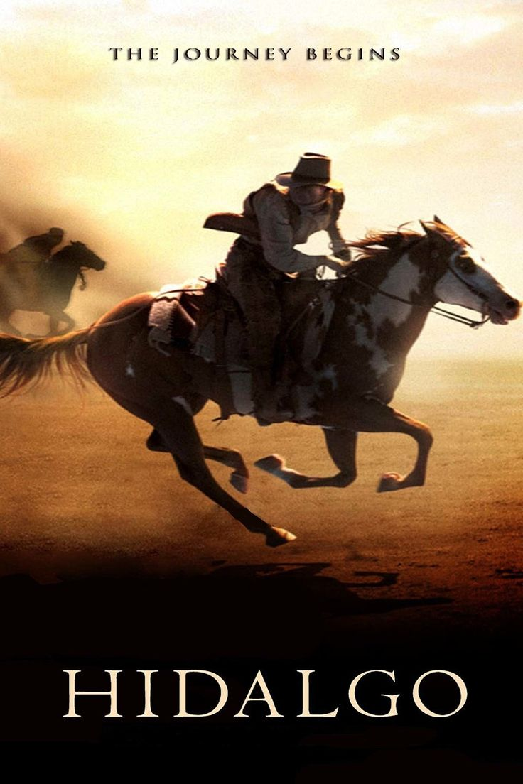 29 best hidalgo images on pinterest horse horses and