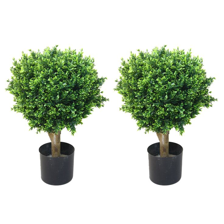 "24"" Hedyotis Artificial Tree Topiary Set Of 2"