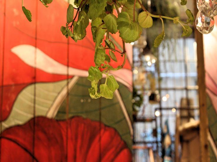 Chicchi ginepri milano :: Negozi di abbigliamento uomo/donna in viale murillo 23, via manin 13, piazza de agostini 4 a milano.