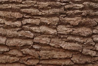 How to Make Fake Tree Bark.  Could be handy for making camo ob geocaches.