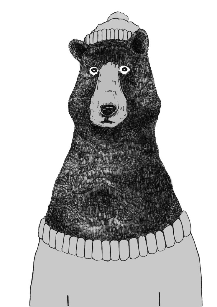 Line Drawing Jumper : Illustration of a bear in jumper and hat by james