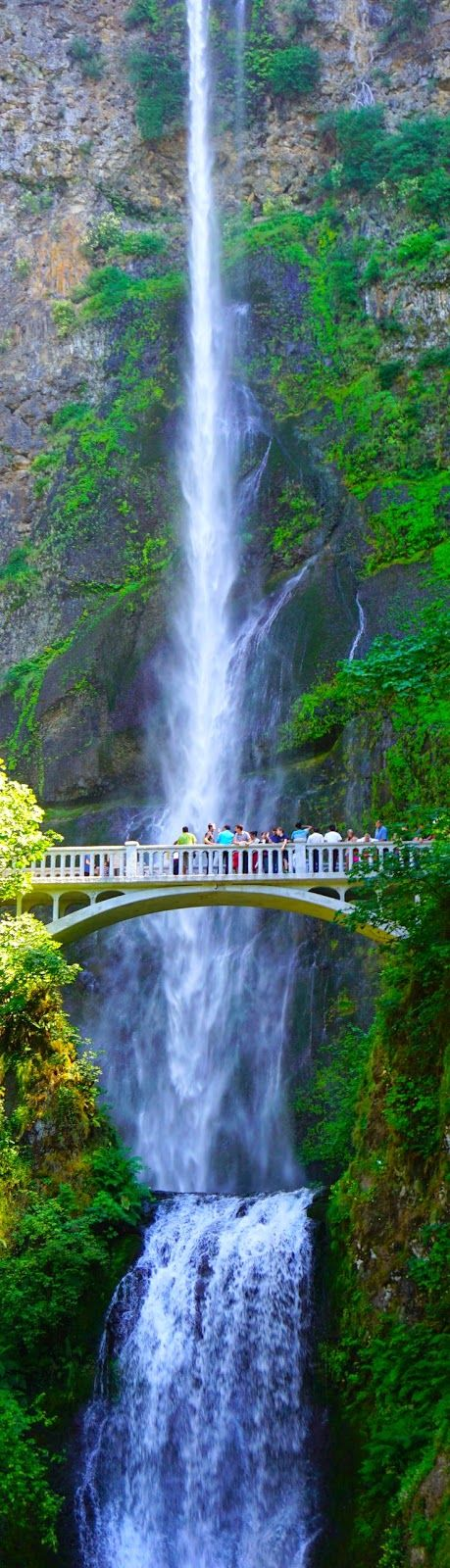 Tiny people on their little bridge add a sense if perspective to the glory of nature  Multnomah Falls, Portland | Destinations Planet