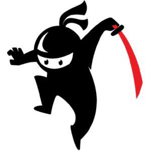 Image result for ninja