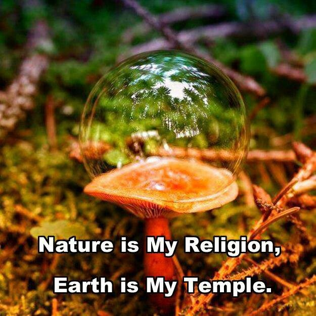 nature of religion A nature religion is a religious movement that believes nature and the natural world is an embodiment of divinity, sacredness or spiritual power.