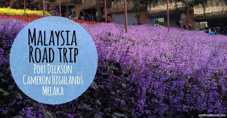 Malaysia Road Trip - Port Dickson | Cameron Highlands | Melaka | Singapore • Newborn Mummy | Newborn Mummy