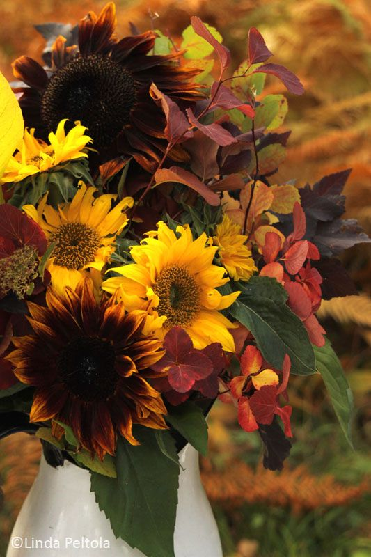 Sunflowers - fall flower arrangement