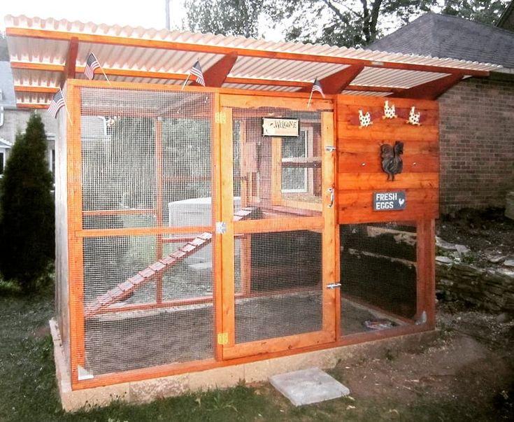 Jodis backyard chicken coop milwaukee wisconsin built