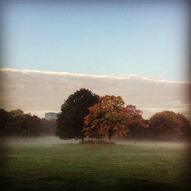 Goffertpark, Nijmegen #clouds #mist #morningglory #autumn #nijmegen #goffertpark