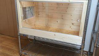 フトアゴヒゲトカゲ(爬虫類)用木製ケージ製作します