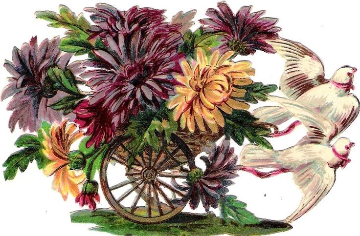 Oblaten Glanzbild scrap die cut chromo Taube  Kutsche dove coach