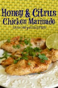 Honey and Citrus Chicken Marinade - Yum! Marinated chicken tenders for about 24 hrs and then popped them on the George Foreman Grill. They will make a delicious addition to salads or paired with brown rice for lunches this week!