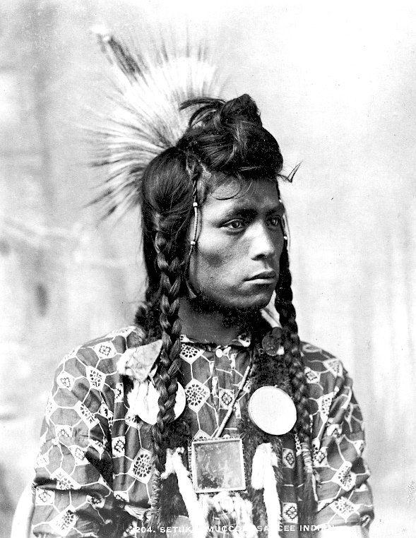 Setukkomuccon. Sarcee. Near Calgary, Alberta, Canada. ca. 1885. Photo by William Hanson Boorne.