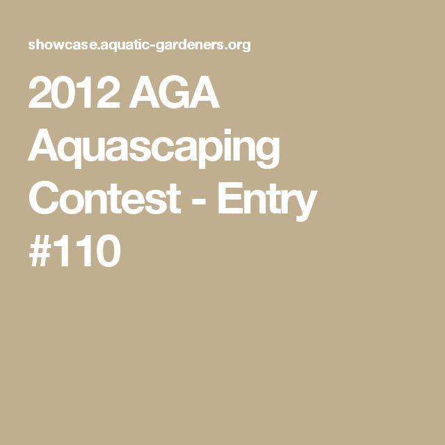 2012 AGA Aquascaping Contest - Entry #110
