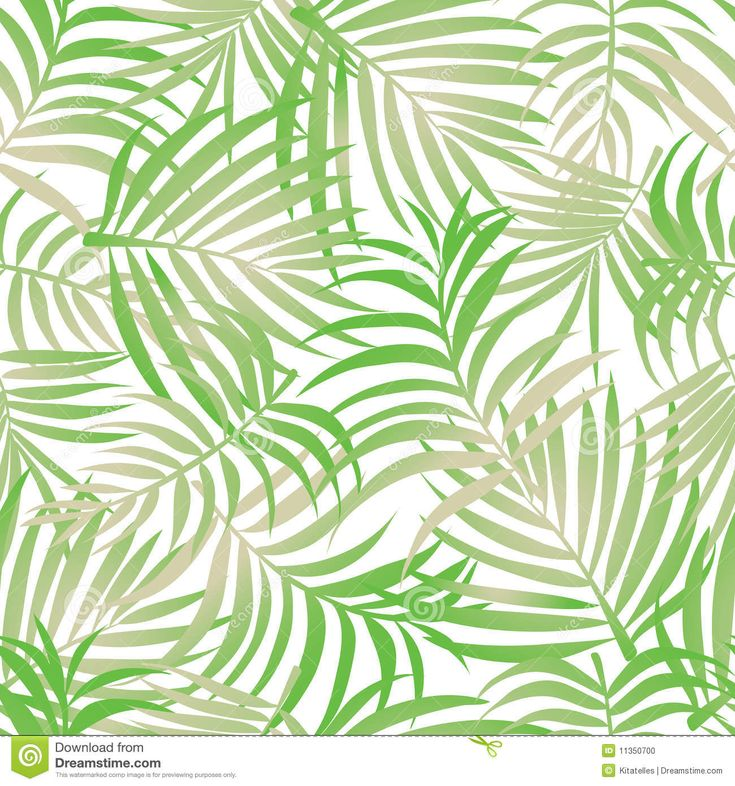 Tropical Patterns Palm Leaves Pattern Background Stock