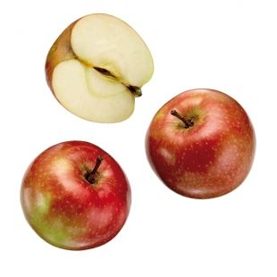 Apple- Good quality product will be firm with smooth, clean skin. Avoid fruit with any bruises or blemishes, which will result in decay spots. Flavour depends on maturity. If picked immature, there will be less colour and flavour. Over-mature fruit will be mealy and lack the crunch of a firm apple.