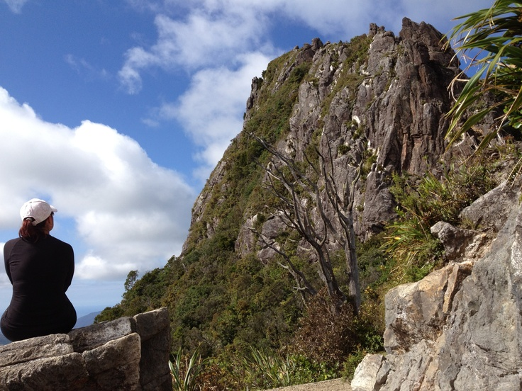The Pinnacles - taking a moment to take it all in before tackling the last challenge, should be in the top 10 walks in NZ. #greatwalker