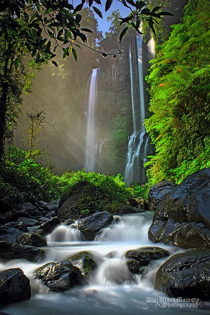 Uncovering bali s 8 most spectacular waterfalls unknown to for Most spectacular waterfalls