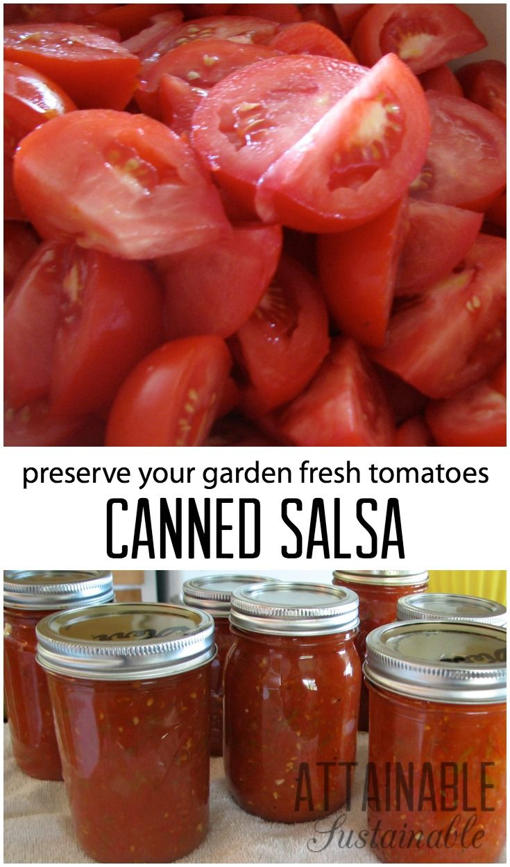 "This simple salsa recipe is a good ""beginner"" recipe for home canning. It's one of our favorite ways to preserve the summer tomato bounty. Click to give it a try!"