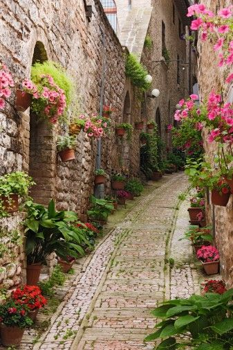 Giverny, France. Ridecolorfully through the streets of Giverny, France Been there, it's like walking right into a Monet painting. Good ideas for growing flowers and walking along the street.