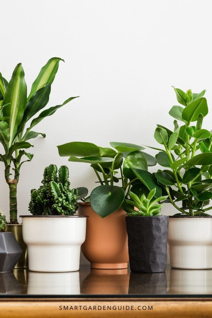 15 Modern Indoor Planters For Every Room In Your Home House Plant Care Indoor Planters Indoor Garden
