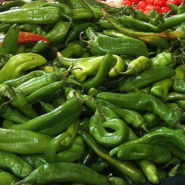 144 best big list of hot peppers images on pinterest - Best romanian pepper cultivars ...
