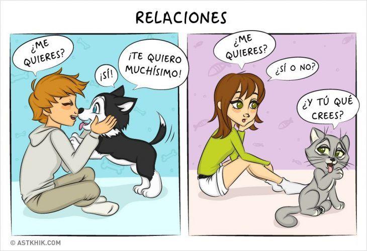 Comic que muestra las diferencias de vivir con un perro y con un gato mientras muestran su relación