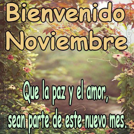 bienvenido-noviembre