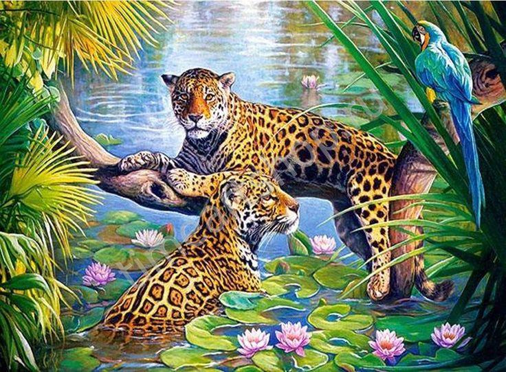 Леопарды в джунглях, картина раскраска по номерам, размер 40*50см, цена 750 руб