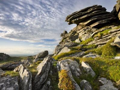 Dartmoor - love all of it!