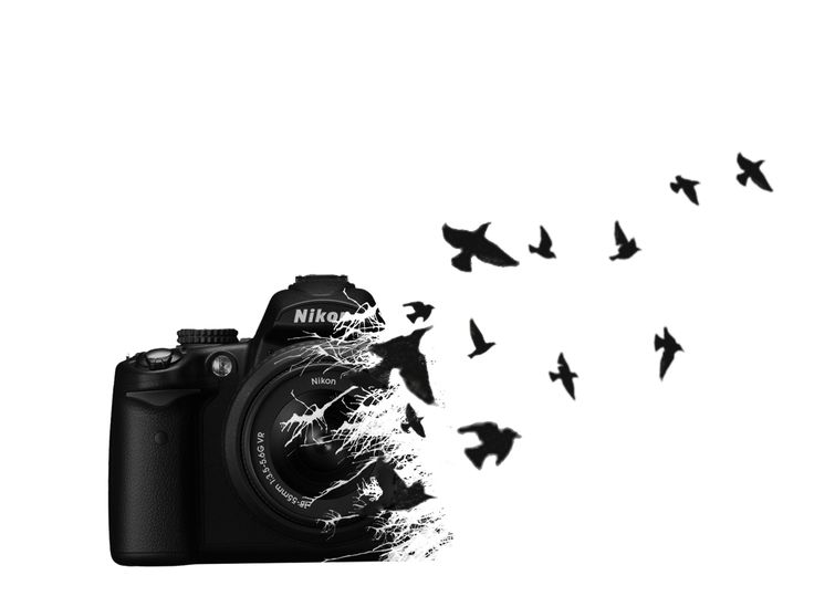 The birds don't make sense, but it'd be cool if they were Polaroid prints instead. | Cool Tattoo Designs | Cool Tattoos